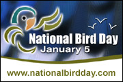 National Bird Day banner