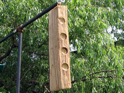 Homemade suet log feeder
