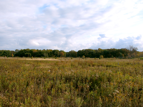 Middlefork Prairie