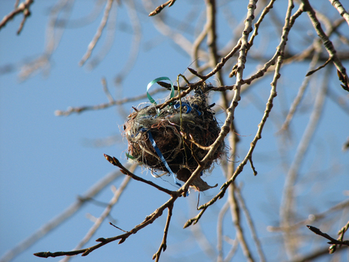 Ribbon-embellished nest
