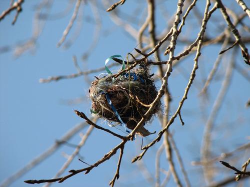 Ribbon-embellished nest